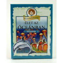 Élet Az Óceánba Kártyajáték